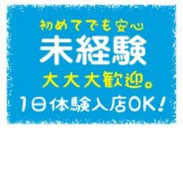 神戸 M-Dolls_店舗イメージ写真3