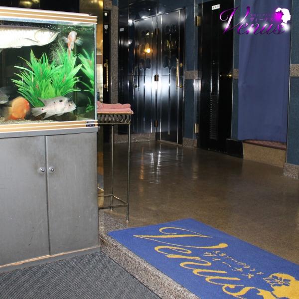 Aqua(アクア)_店舗イメージ写真2