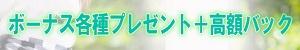ぴゅあルーチェ_PC版広告枠