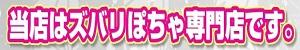 松本塩尻ちゃんこ_PC版広告枠