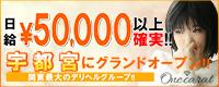 宇都宮ONE CARAT(ワンカラット)_PC版広告枠